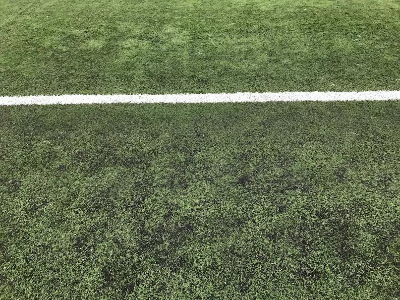 Image Result For Artificial Turf Cost Per Square Foot